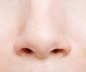 close up of woman nose