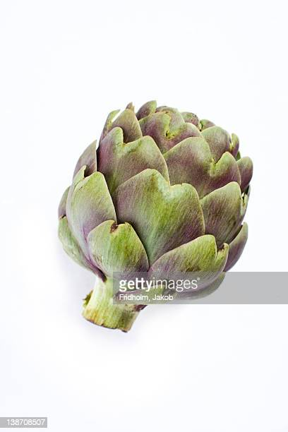 Close-up studio shot of organic artichoke