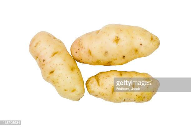 Close-up studio shot of organic potatoes