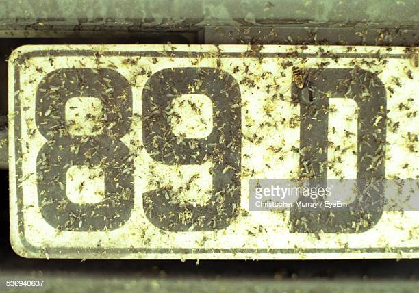 Close-Up View Of Dirty License Plate
