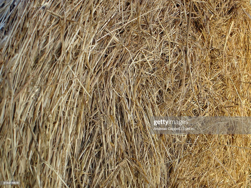 Close-up View Of Hay Bale