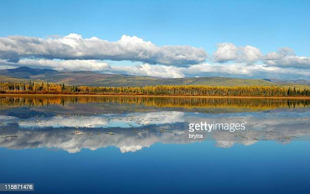 Cloud and tree reflections,Gravel Lake,Territory,Canada