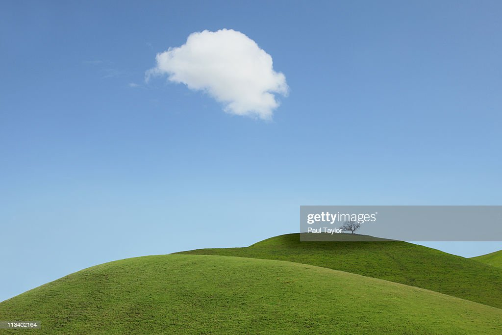 Cloud Casting Shadow on Green Hills and Tree : Stock Photo