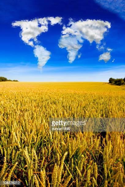 Cloud Formation dans la carte du monde sur le champ de blé