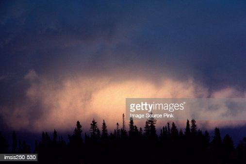 Cloud over silhouetted forest : Foto de stock