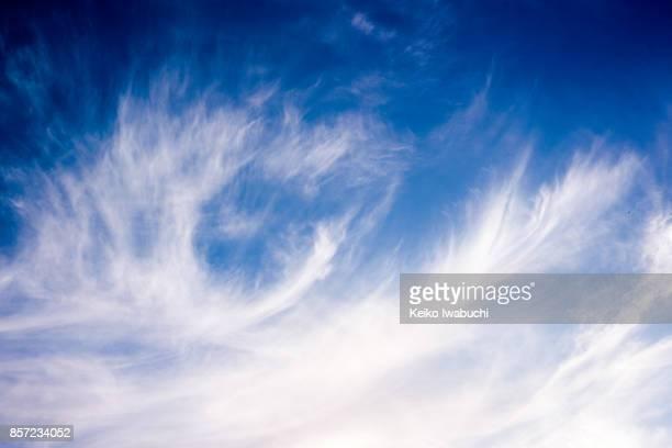 Cloud that the shape looks the phoenix