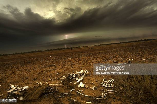 Clouds and lightning near Barringun New South Wales on drought parched land New South Wales and south west Queensland received severe storms dust and...