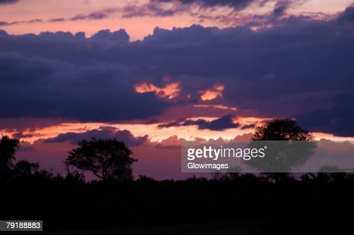Clouds over a forest at dusk, South Africa : Foto de stock