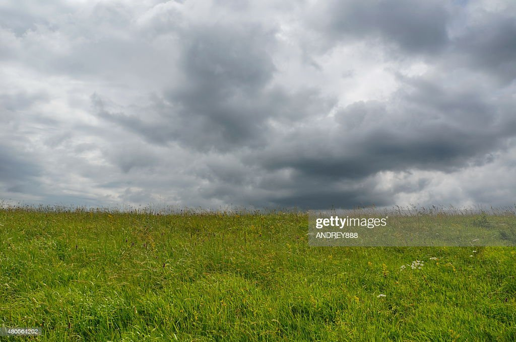 Clouds over a summer meadow : Stock Photo