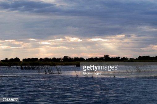 Clouds over a swamp, Okavango Delta, Botswana : Foto de stock