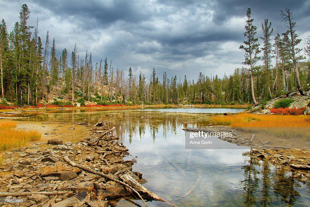 Clouds reflected in outlet of Alice Lake, Idaho