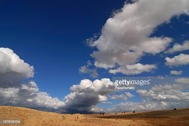 Cloudscape in New Mexico