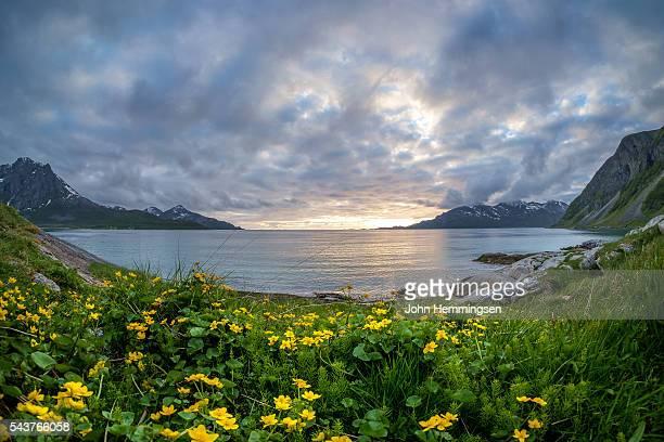 Cloudy evening in Grøtfjord