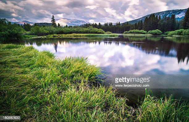 Cloudy sky reflections in a pond
