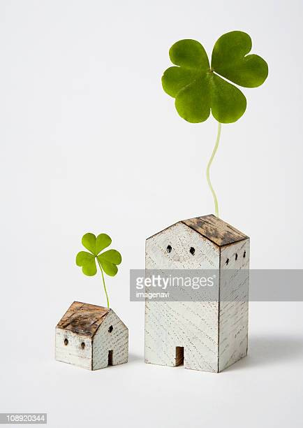 Clovers and miniature houses