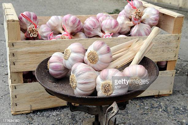 Cloves of pink garlic which hold the 'Red Label Award' are seen on August 23 2013 outside Mr Fournier's farm in Lautrec southern France AFP PHOTO /...