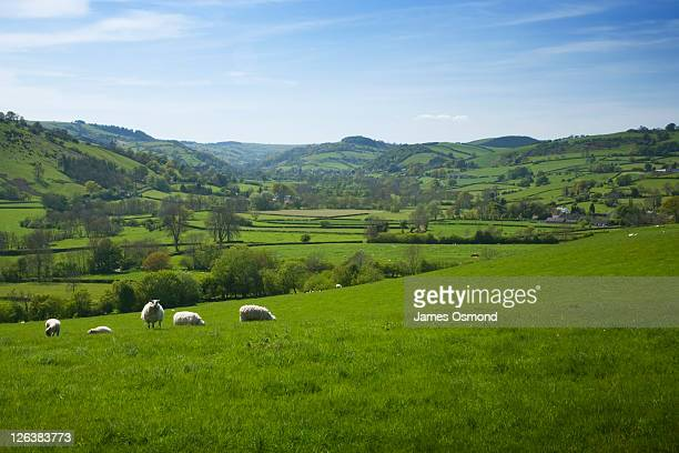 Clun Valley in Spring. Shropshire. England. UK.
