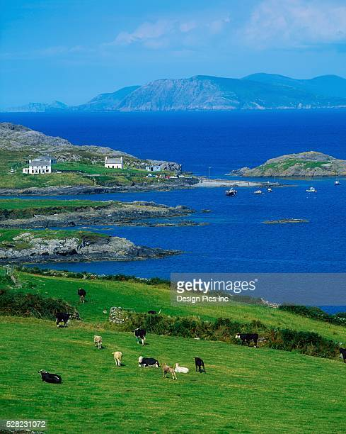 Co Cork, Garinish Island, Beara Peninsula, Ireland