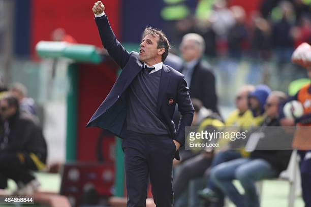 Coach of Cagliari Gianfranco Zola gestures during the Serie A match between Cagliari Calcio and Hellas Verona FC at Stadio Sant'Elia on March 1 2015...
