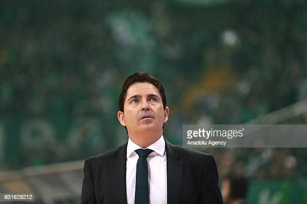 Coach of Panathinaikos Xavi Pascual looks on during Turkish Airlines Euroleague basketball match between Panathinaikos and Anadolu Efes in Olympic...