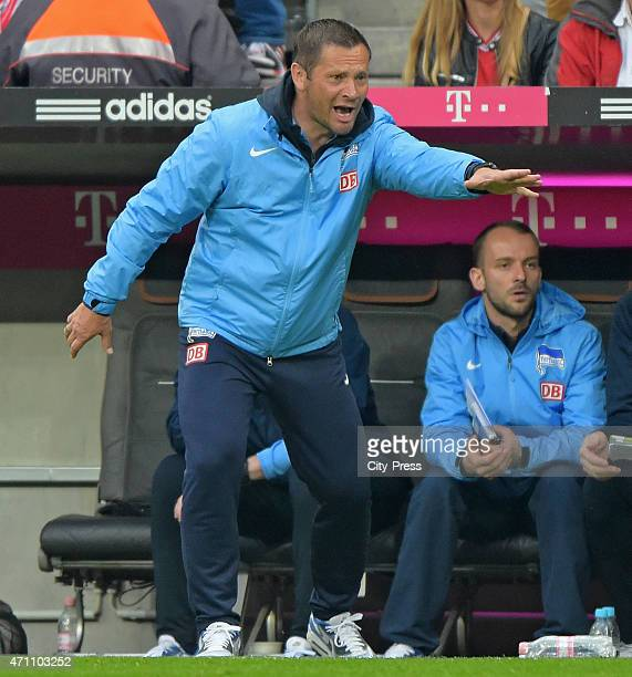 coach Pal Dardai of Hertha BSC gestures during the game FC Bayern Muenchen against Hertha BSC on april 25 2015 in Muenchen Germany
