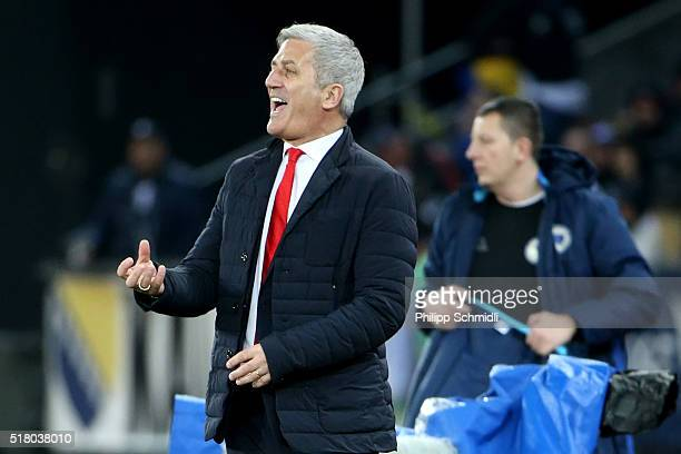 Coach Vladimir Petkovic of Switzerland directs his players during the international friendly match between Switzerland and BosniaHerzegovina at...