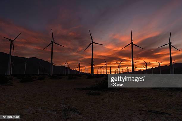 コーチェラバレーの風力タービン