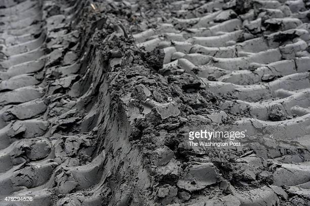 Ash From Coal ~ Ash stock photos and pictures getty images