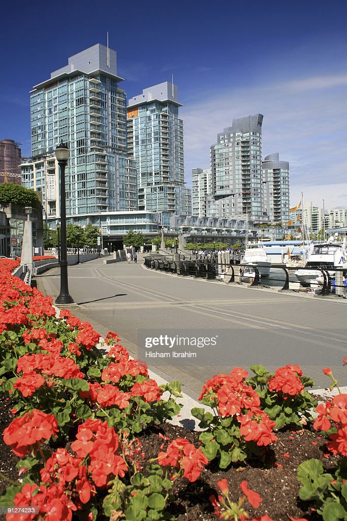 Coal Harbour and Vancouver Skyline and Waterfront
