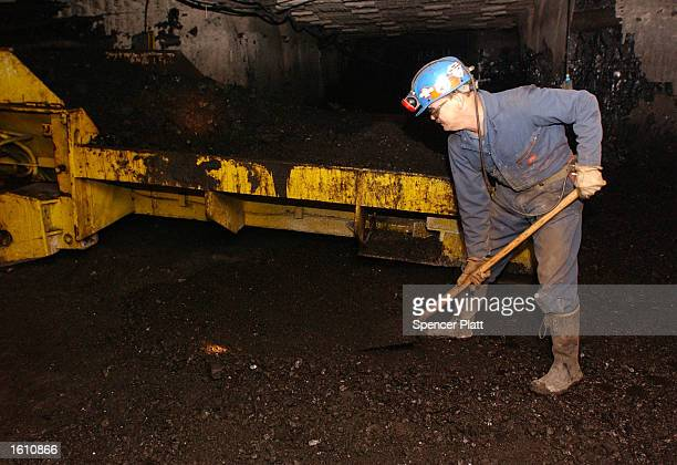 A coal miner shovels coal onto a loader August 26 2001 at the Mathies coal mine in western PA The Mathies mine which employs 164 miners is one of the...