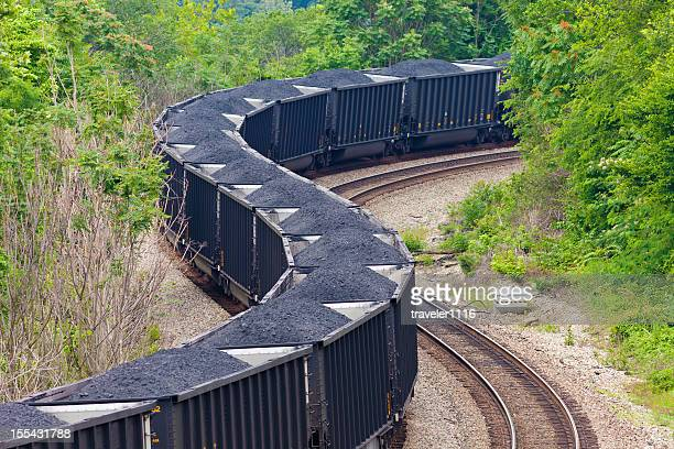 Coal Train In The Forest