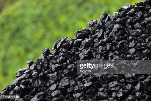 Coal - wet