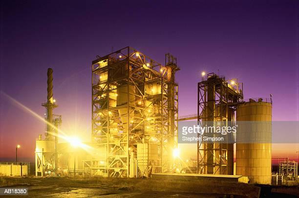 Coal-fired cogeneration plant