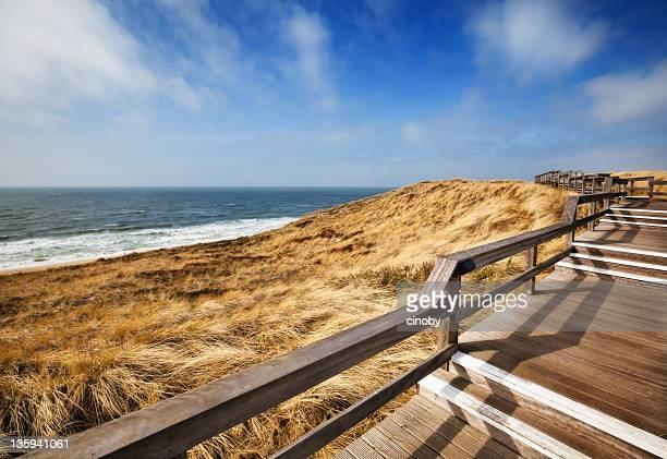 Coast-Walking-Pfad