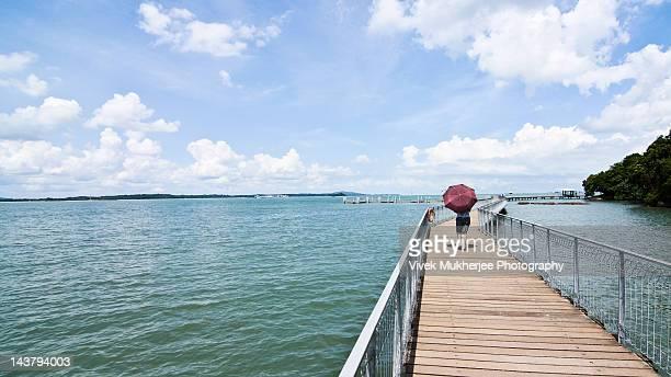 Coastal boardwalk in Pulau Ubin