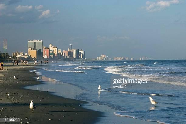 Coastal Cityscape