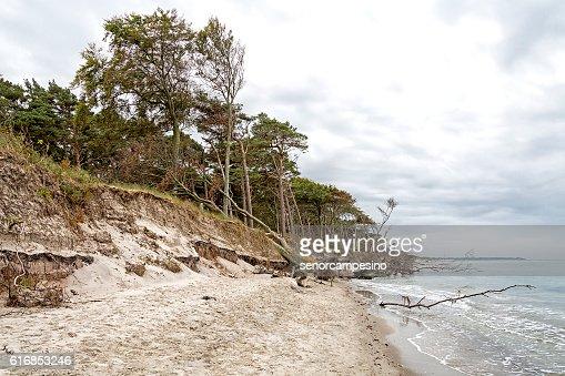 Coastal erosion : Stock Photo