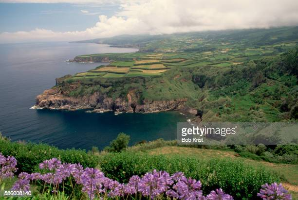 Coastal Landscape on San Miguel Island