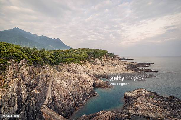 Coastal path, Yakushima Island, Japan