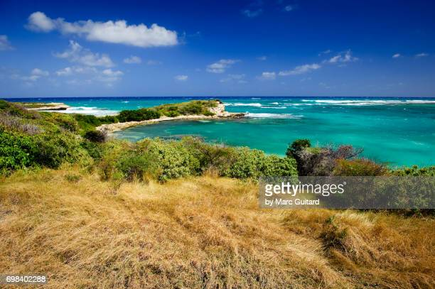 Coastal Scene, Saint Philip Parish, Antigua