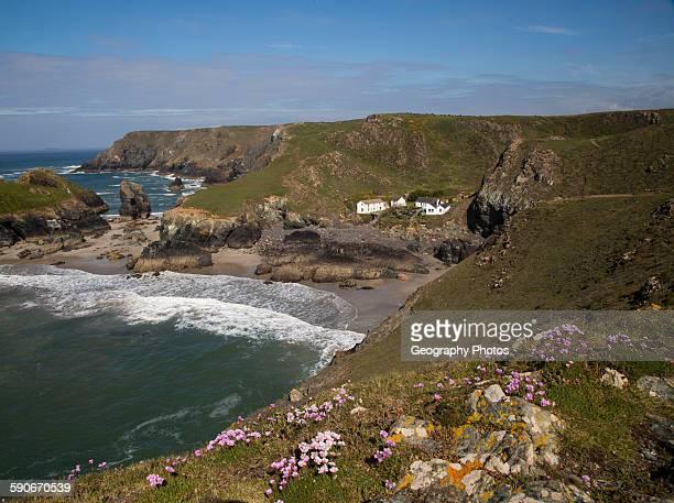 Coastal scenery near Kynance Cove Lizard Peninsula Cornwall England UK