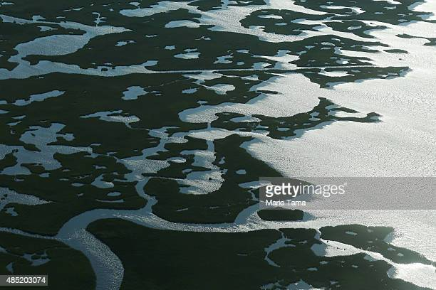 Coastal waters flow through deteriorating wetlands on August 25 2015 in Saint Bernard Parish Louisiana Louisiana is currently losing its wetlands at...