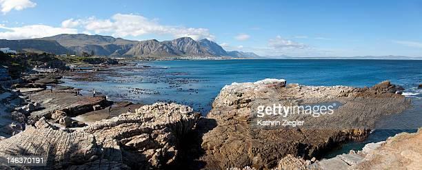 coastline at Hermanus, Western Cape, South Africa