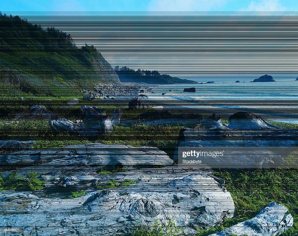 Coastline in Redwood National Park, near Crescent City, California, USA : Stock Photo