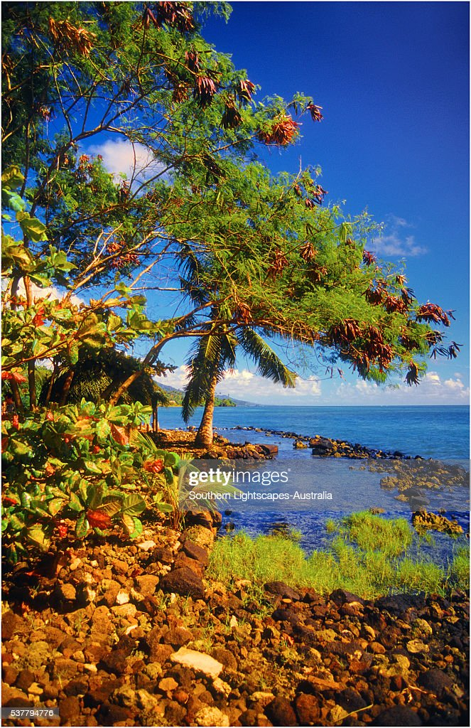 Coastline on The Island of Upolu, Western Samoa.