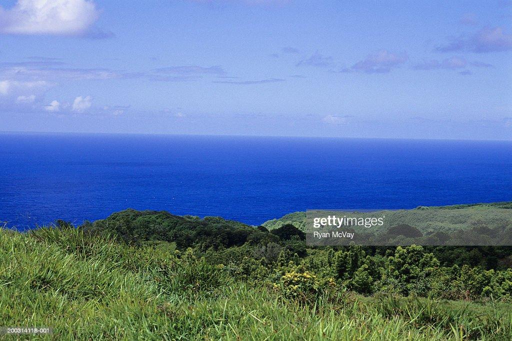 Coastline : Stock Photo