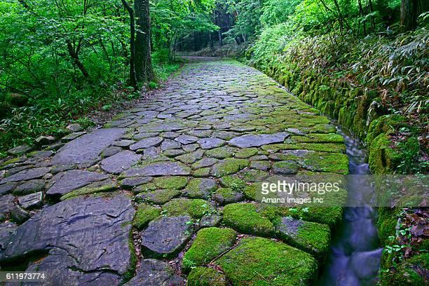 Cobblestone footpath in Ochiai