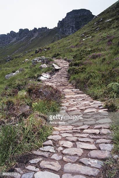 Cobblestone path on grassy hillside, Scotland
