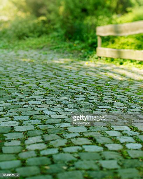Cobblestone path
