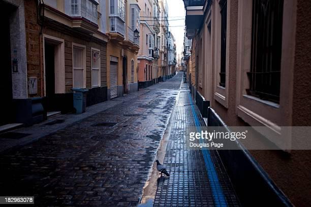 Cobblestone street in Cadiz, Spain